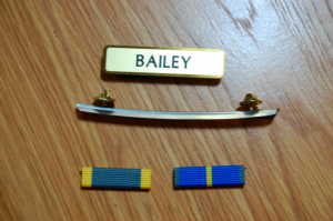 RMN ribbons and name plate